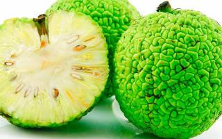 Адамово яблоко рецепт от псориаза