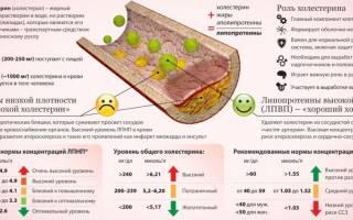 анализ крови на холестерин норма у мужчин таблица