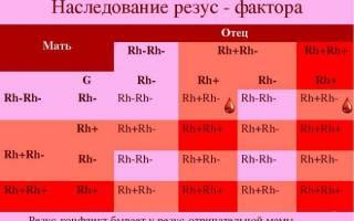 4 группа крови резус положительный редкая группа крови