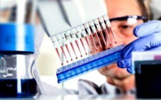 анализ крови на вич и гепатит сроки