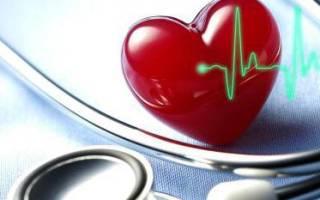 аппарат для измерения сердечного ритма на сутки