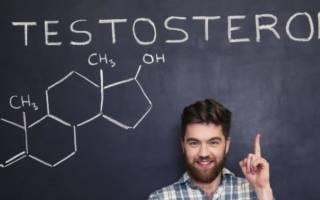 анализ на тестостерон у женщин когда сдавать