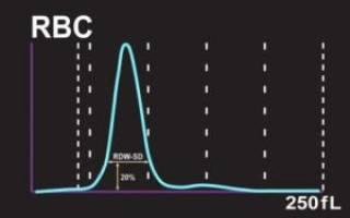 ширина распределения эритроцитов по объему выше нормы