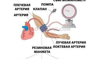 что такое пульсовое давление и его норма