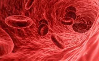 4 группа крови положительная совместимость с другими группами