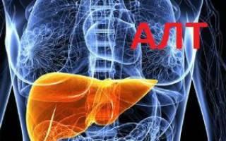 alt анализ крови выше нормы что это значит