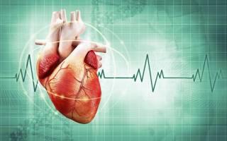 что может болеть в области сердца кроме сердца