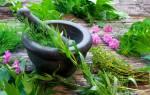 Ванна из трав при псориазе