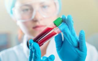 что такое лейкоциты в анализе крови повышены