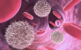 эритроциты в крови норма у женщин по возрасту таблица