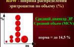 rdw анализ крови расшифровка норма у мужчин